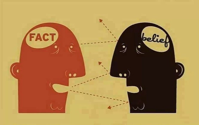 fact belief